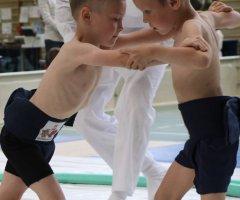 grand-prix-pragi-poludnie-w-sumo-walki-84